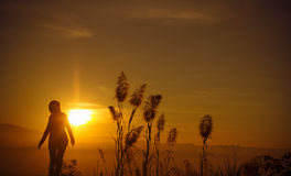 Sunset silhouette Young woman alone Royalty Free Stock Images