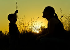 Sunset silhouettes. Woman and child silhouettes in a sunset pin field Royalty Free Stock Photography
