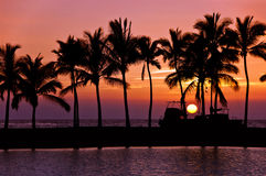 Sunset silhouettes. In Big Island Hawaii Stock Photography