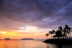Sunset with silhouettes of palm trees. On tropical beach Royalty Free Stock Image