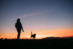 Sunset silhouettes woman and dog on the walk Stock Photo