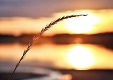 Sunset simplicity. Sunset with minimalistic distraction royalty free stock photos