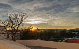 Sunset and single tree Royalty Free Stock Photography