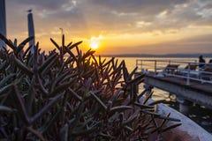 Sunset on Lake Garda royalty free stock image