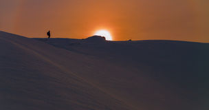 Sunset skier in the Backcountry Royalty Free Stock Image