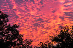 Sunset and skies Royalty Free Stock Image