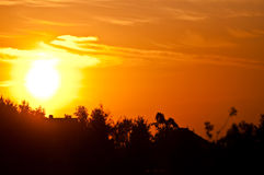 Sunset sky. Vibrant sunset with cloudy sky and sun ball over trees Royalty Free Stock Images
