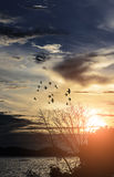 Sunset sky clouds nature Royalty Free Stock Images