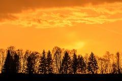 Sunset sky clouds trees orange Royalty Free Stock Photos