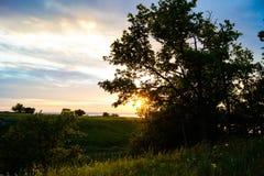 Sunset sky. Royalty Free Stock Photos