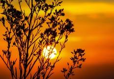 Sunset, Sky, Glow, Orange, Dusk Stock Photo