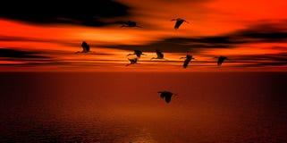 Sunset, Sky, Horizon, Sunrise royalty free stock photos