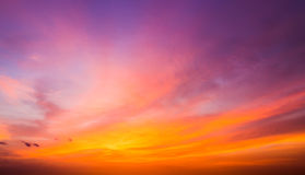 After sunset sky. The magnificent sky and clouds in last beams of the sun royalty free stock photo
