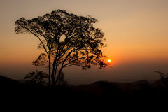 Sunset Sky. On Mountain in Northern Thailand Royalty Free Stock Photo