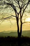 Sunset sky in the natural scenery, meadows and trees Stock Images