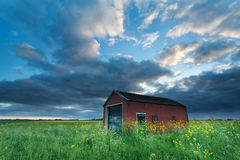 Sunset sky over farmhouse on rapeseed field Royalty Free Stock Photos