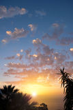 Sunset sky over water with palm tree silhouette Stock Photography