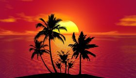 Sunset, Sky, Palm Tree, Arecales Stock Photography