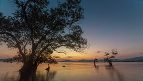 Sunset sky phuket island tree beach 4k time lapse thailand. Thailand sunset sky phuket island tree beach 4k time lapse stock footage