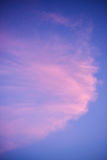 Sunset sky with pink clouds Stock Photography