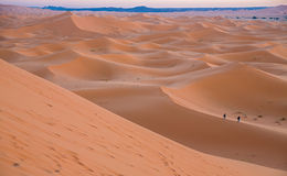 Skyline of dunes Stock Photography