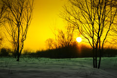 Sunset with snow Royalty Free Stock Image
