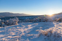 Sunset in snow-covered mountains and forest Royalty Free Stock Photography