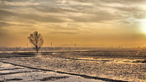 Sunset on the snow field Royalty Free Stock Photography