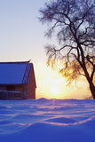 Sunset on snow field. The sunlight fell aslant the surface of snow through a house and tree Stock Photography