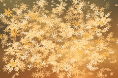 Sunset snowfall crystals Royalty Free Stock Images