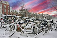 Sunset in snowy Amsterdam in the Netherlands. In winter Royalty Free Stock Photos