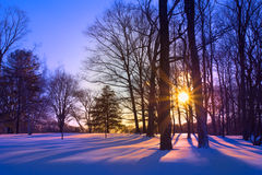 Sunset on Snowy Day Royalty Free Stock Images
