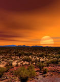 Sunset Sonora Desert. In central Arizona USA Stock Photo