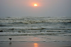 Sunset in South Padre Island, Texas Stock Photo
