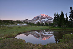 Sunset at Spray Park in Mt Rainier National Park Royalty Free Stock Photos