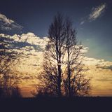 Sunset. Spring sunset in russia Royalty Free Stock Image