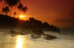 Sunset on Sri Lanka Royalty Free Stock Photo