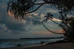 SUNSET ON SRI LANKA Stock Photography