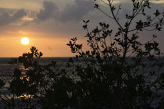 Sunset at St. Pete. On the Gulf coast of Florida stock photography