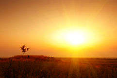 Sunset in the steppe Royalty Free Stock Images