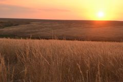 Sunset in the steppe Stock Photos