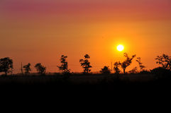 Sunset in the steppe Stock Images