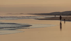 Sunset on Stockton Beach. Anna Bay. Australia. Royalty Free Stock Photos