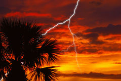 Sunset Storm. A beautiful fire red sunset storm in Florida with palm tree stock image
