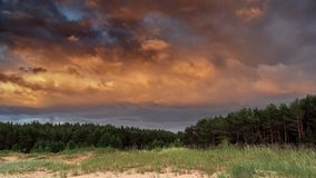 Sunset and storm clouds over forest Stock Photo