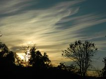 Sunset and Stratus Clouds. A cloudy sunset through trees stock photography