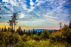 Sunset in Sumava forest. Czech Republic. Sunset in national park `Sumava forest`. Czech Republic royalty free stock images