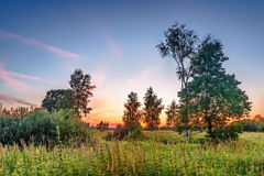 Sunset in summer field. Landscape with coloful sunset in summer field Stock Photography