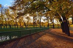 Sunset in Summer garden. Autumn in St.-Petersburg Stock Photos