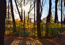 Sunset in Summer garden. Autumn in St.-Petersburg Royalty Free Stock Image